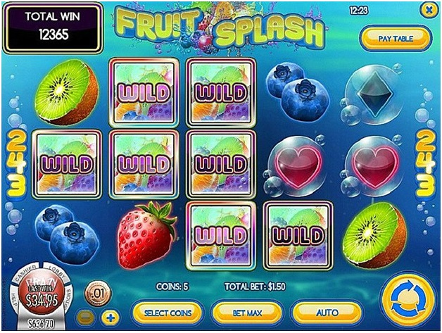 Fruit splash slot-Game Features